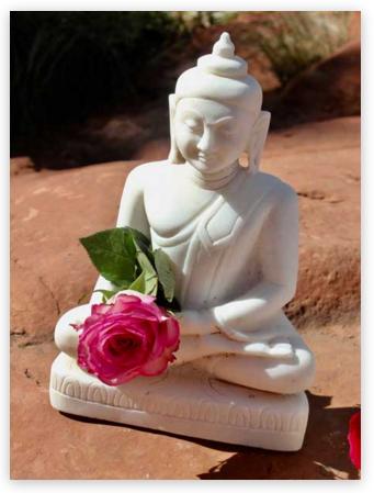BuddhaRose